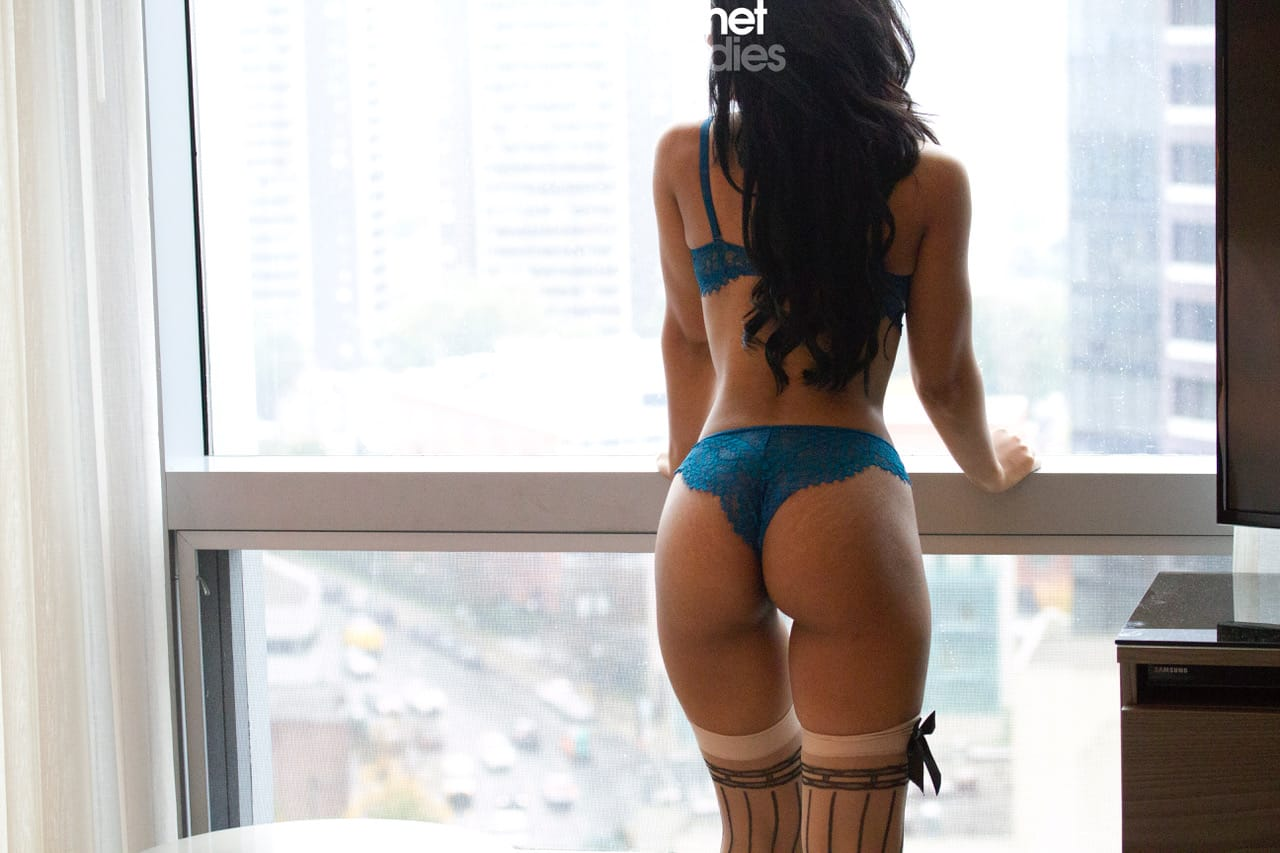 Amelia Cachet Ladies Escorts